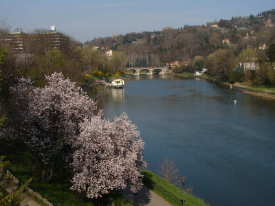 The Po River View From Turin