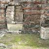 Thermes De Cluny: Caldarium