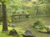 Golden Pond In The Center Of The Moss Garden