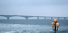 The Saratov Bridge