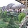 El Schmutzer Primate Centre