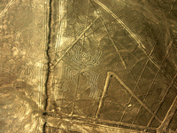 Ballestas Islands, Nazca Lines 4 Days