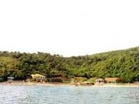 A Ilha Vang