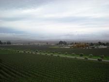 Sonoma Valley
