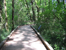 THNP Footbridge - BeavertonOR
