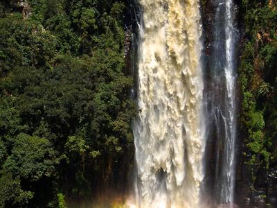 Thomsons Falls