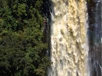 Thomson Falls