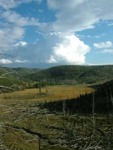 Thunderhead Over Yellowstone