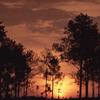 Salaeng Thung Luang Parque Nacional