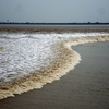 Tidal Bore At The Qiantang River In Hangzhou