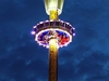Tiger Sky Tower At Night