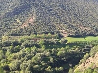 To Do in Ouirgane - Day Excursions The Berber Village to Ouirgane Valley