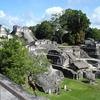 Tikal Mayan Archaeological Ruin Site