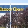 Tillamook Creamery And Museum