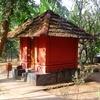New Amarambalam Reserved Forest