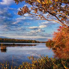 Tobyhanna State Park