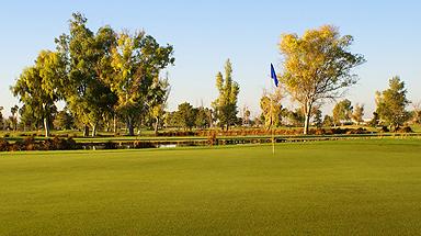 Toka Sticks Golf Club