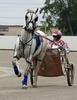 Toledo Raceway Park