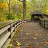 Toledo Wildwood Preserve - Ohio