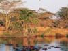 Tontu Safari