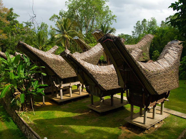 Indonesia Cultural Journey - 2 Islands Photos