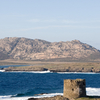 Asinara Island