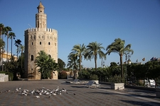 Torre Del Oro With Birds In Courtyard - Seville Andalusia