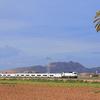 Torre Pacheco Town - Murcia