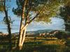 Torrey Utah