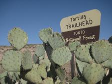 Tortilla Trailhead At Tonto