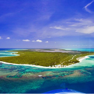 Tourist Attractions In Anegada Island