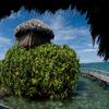 Tourist Attractions In Bocas Del Toro