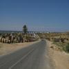 Tourist Attractions In Djerba Island