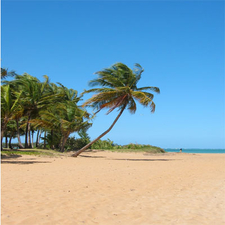 Tourist Attractions In Luquillo