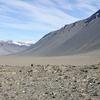 The McMurdo Dry Valleys