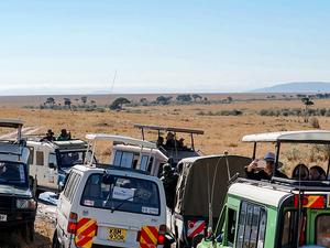 4 Days Masai Mara Luxury Safari Fotos