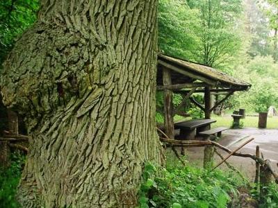 Tourist Trail Masiewo – Wood Grouse Range - Masiewo