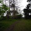 Trail To Tusan Falls