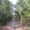 Trail View - Key Largo - Florida Keys
