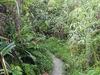 Trekking Gunung Sibayak - North Sumatra