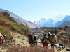 Trekking Langtang Valley