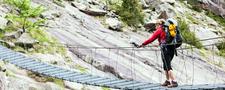 Trek N Trails