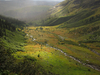 Triple Divide Trail- Glacier - Montana - USA