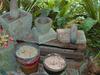 Tropical Spice Garden - Penang