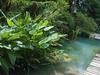 Tropical Spice Garden - Teluk Bahang