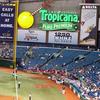 Tropicana Field Baseball Match