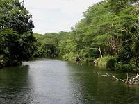 Tsavo Río
