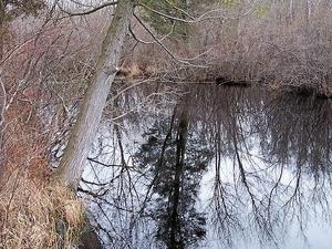 Tuckahoe Río