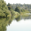 Tukwila Duwamish River