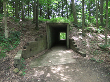 Tunnel On Lake Trail